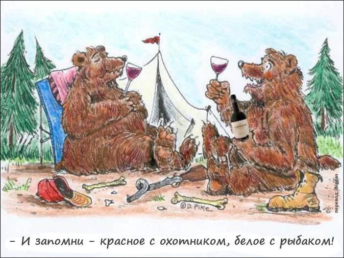 Самые известные юристы в россии