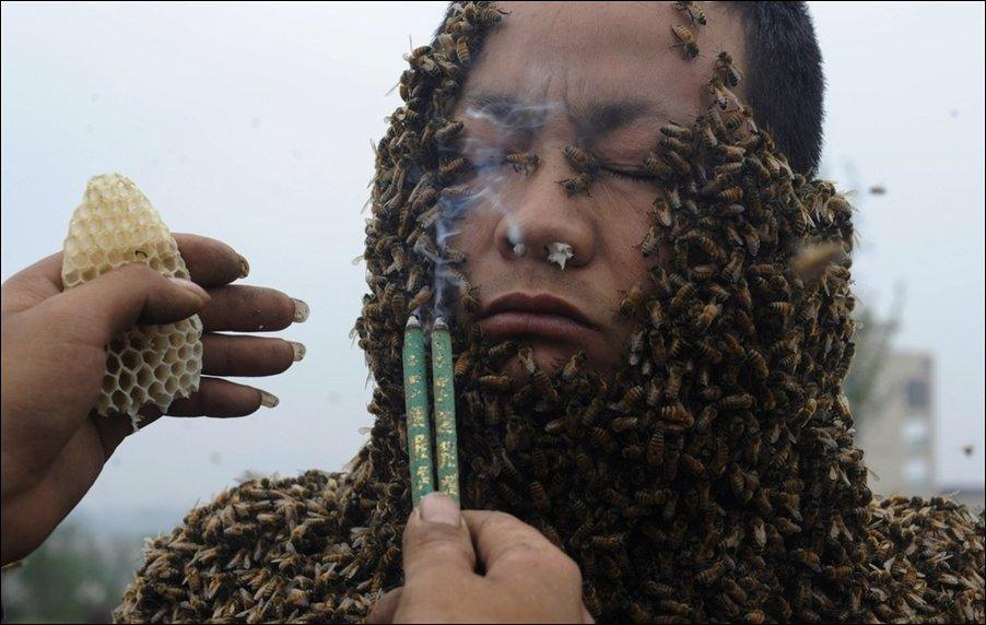 Костюм из пчел