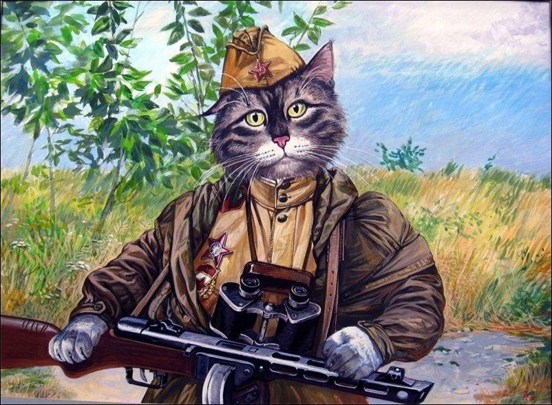 Коты на службе