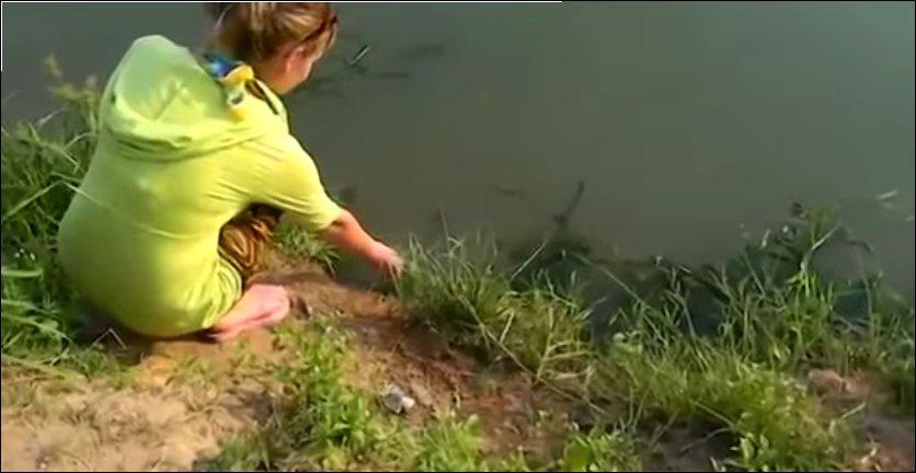 Покорми рыбку