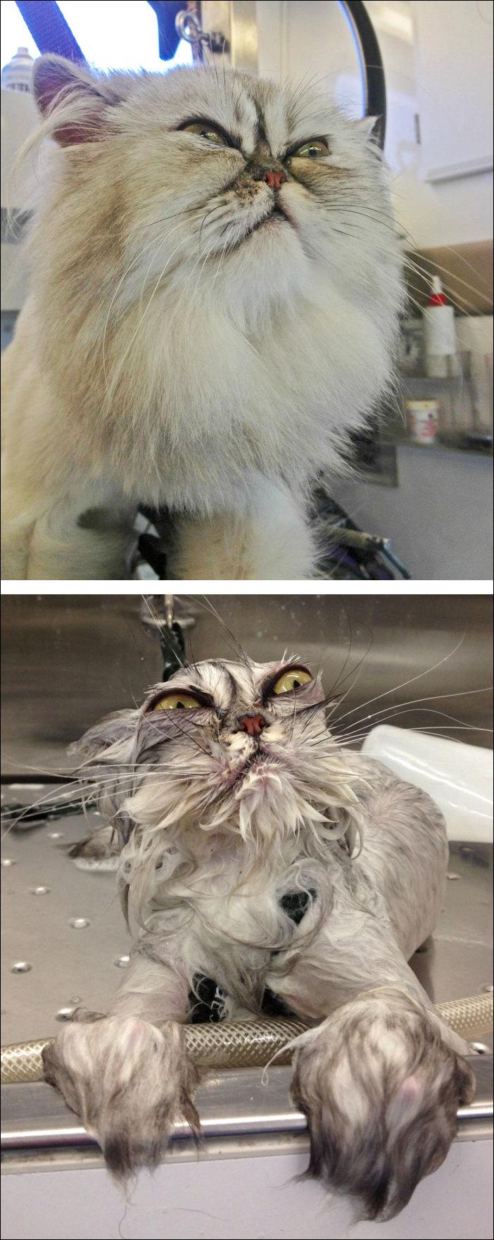 до и после душа