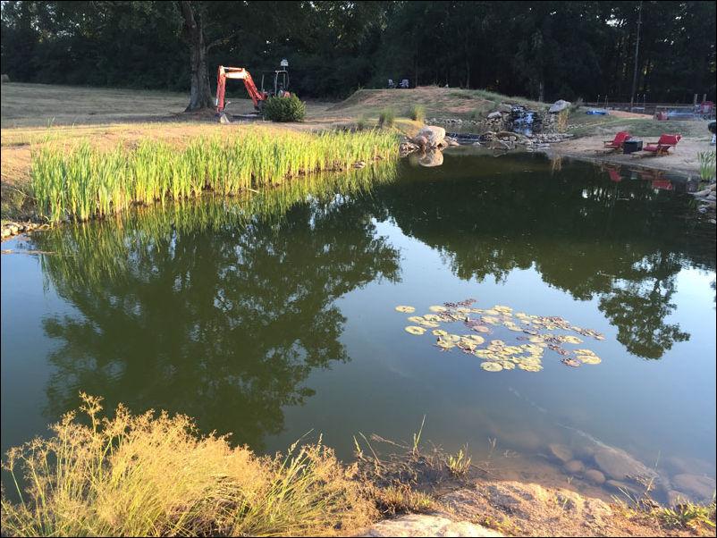 постройка пруда