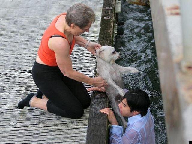 dog-rescue-13
