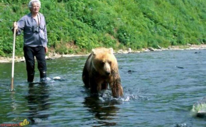 friendly-bears-02