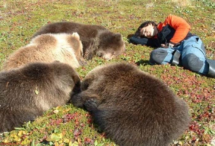 friendly-bears-06