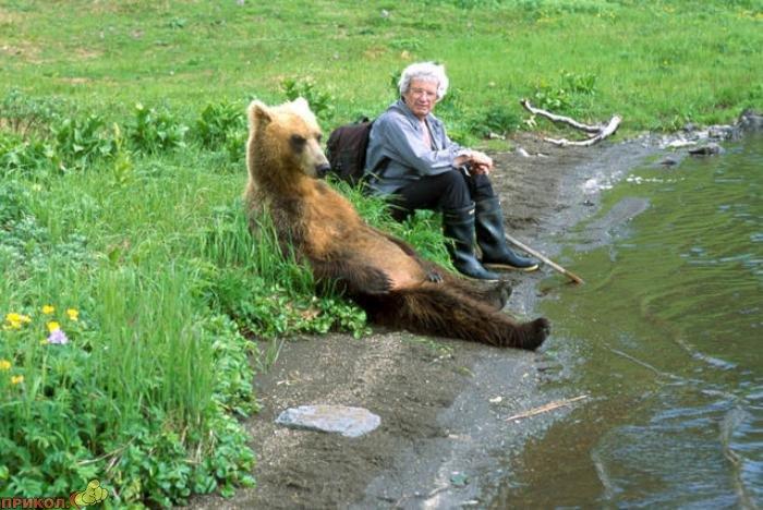 friendly-bears-07