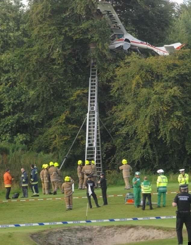 plane-crash-tree-02