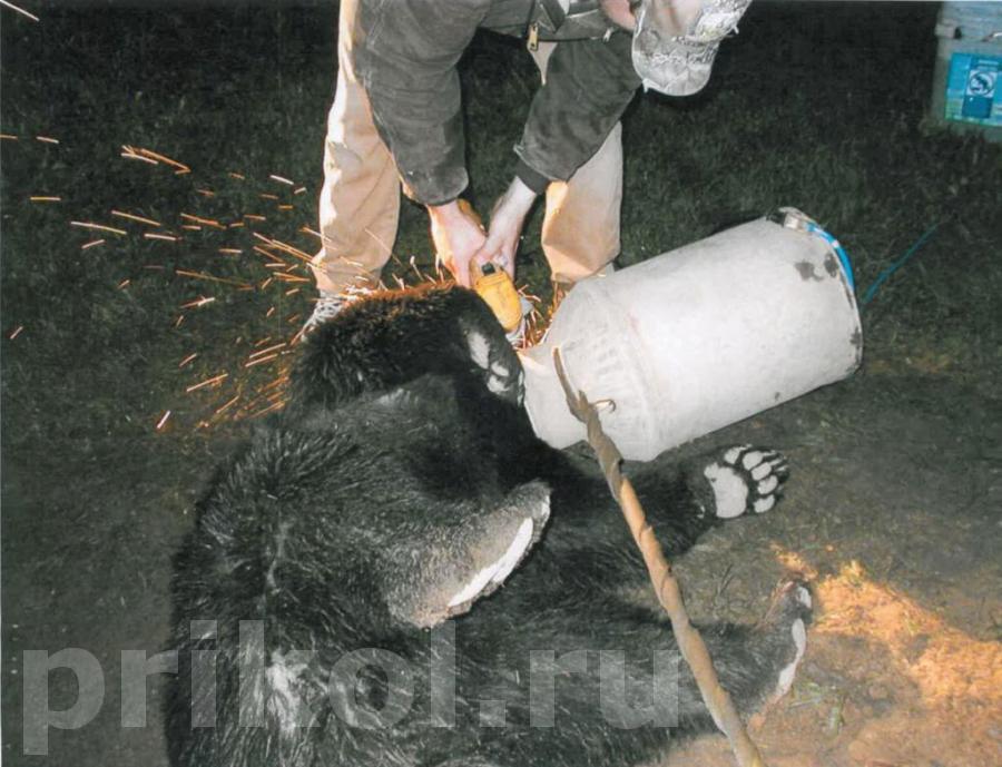 milkbear-09