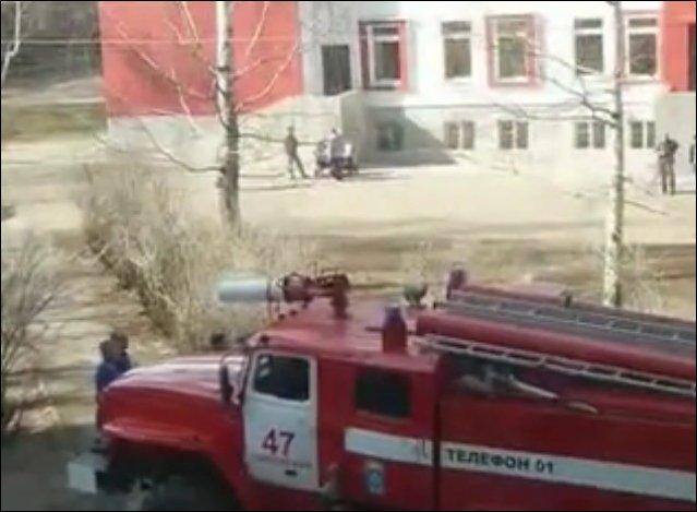 Пожарные снимают кота с дерева