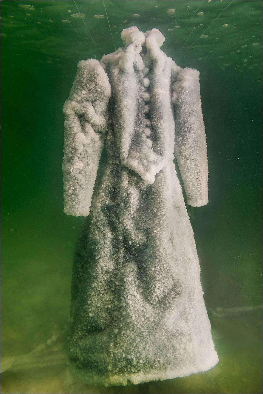 засолил платье