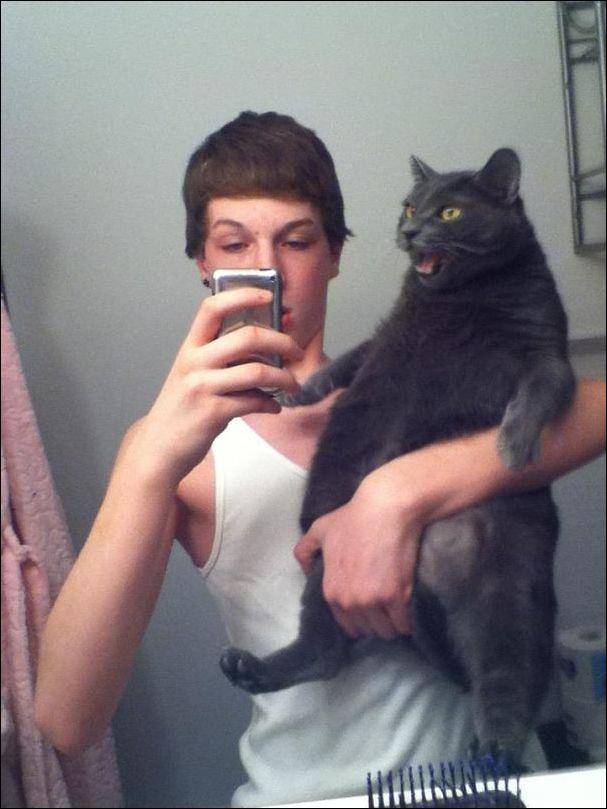 коты не любят селфи