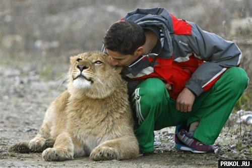 lion-frend-03