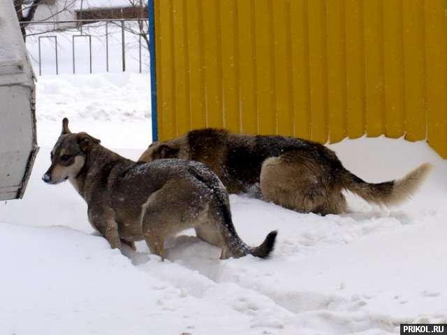 odessa-snow-storm-13
