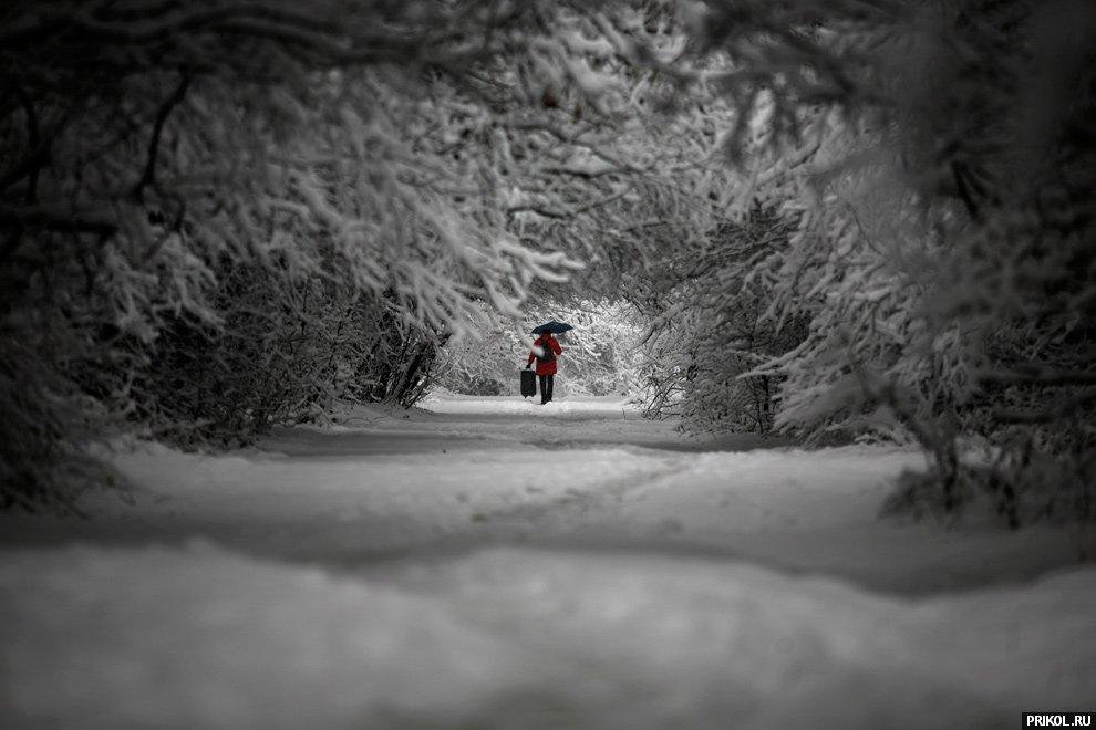 snow-scenes-04