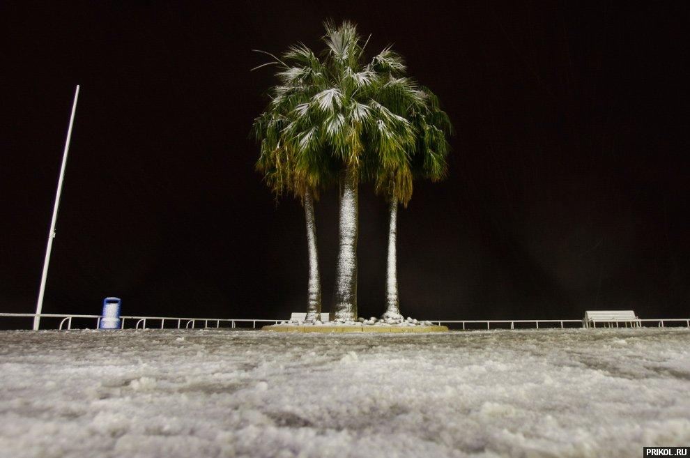 snow-scenes-09