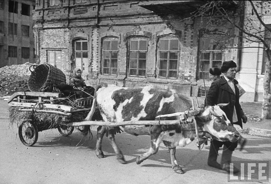 stalingrad-1947-16