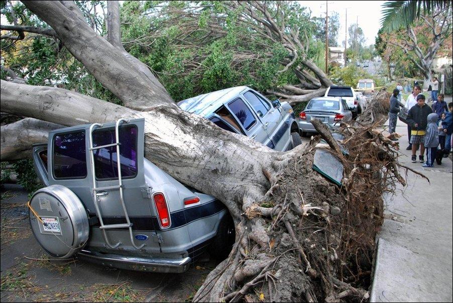 Штормовой ветер в Калифорнии