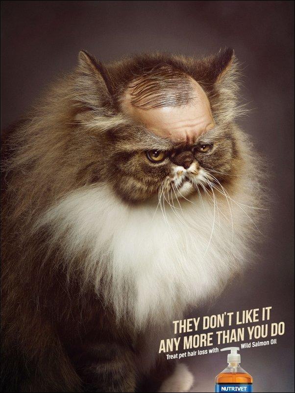Лучшая реклама 2013