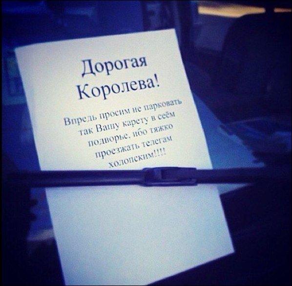 http://www.prikol.ru/wp-content/gallery/december-2014/podborka-19122014-076.jpg
