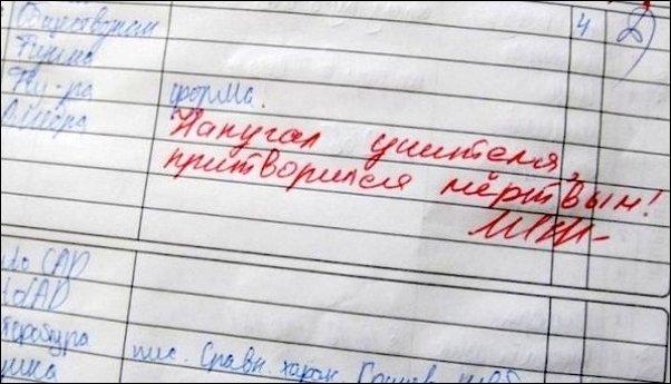 Записи в школьных дневниках