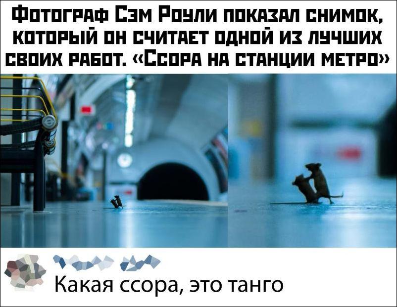 kartinki-15122019-014.jpg