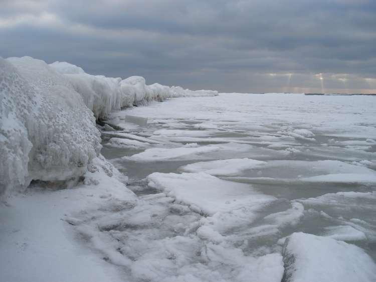 baltika-02february2010-01