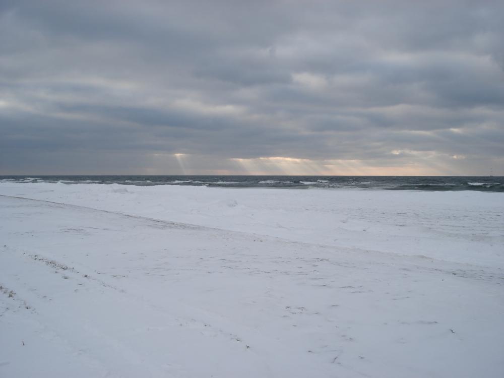 baltika-02february2010-03