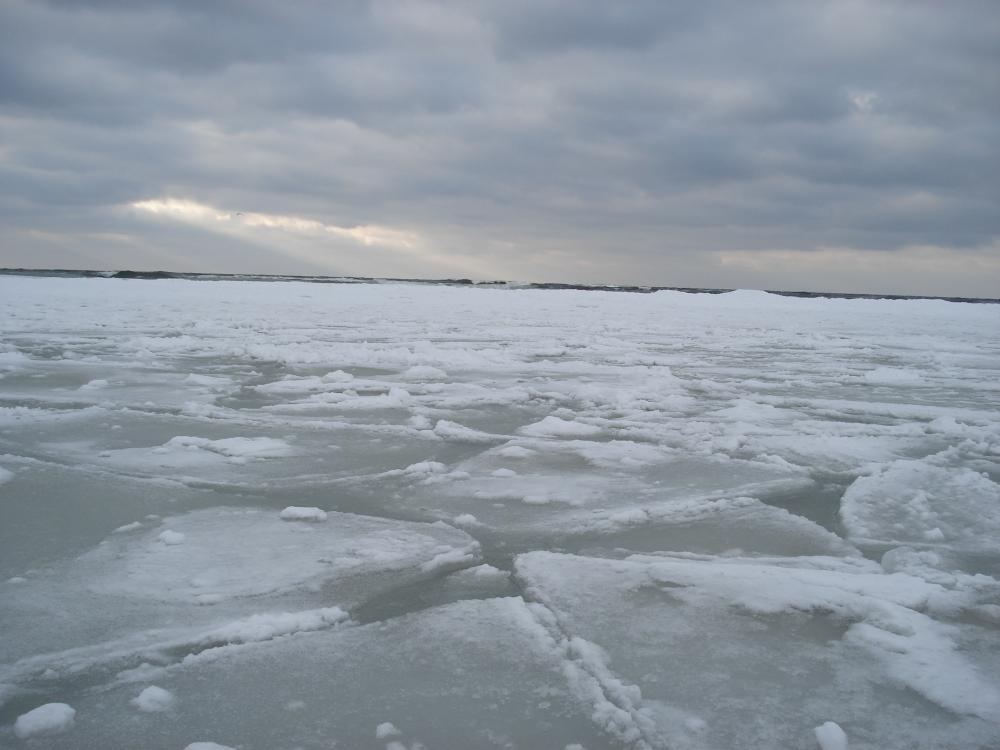 baltika-02february2010-06