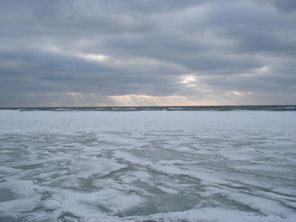 baltika-02february2010-08