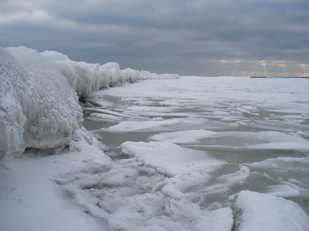 baltika-02february2010-11