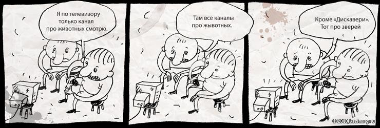 foto-14