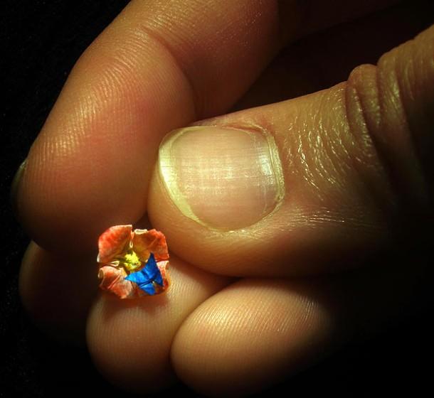 small-origami-05