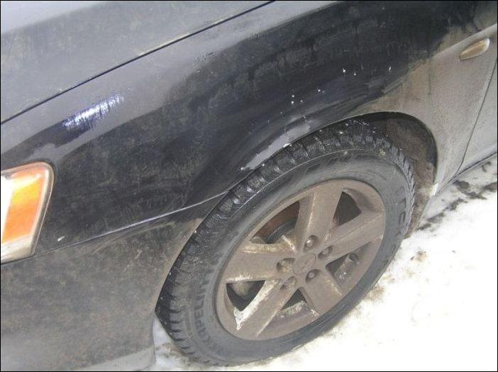 Собаки погрызли автомобиль