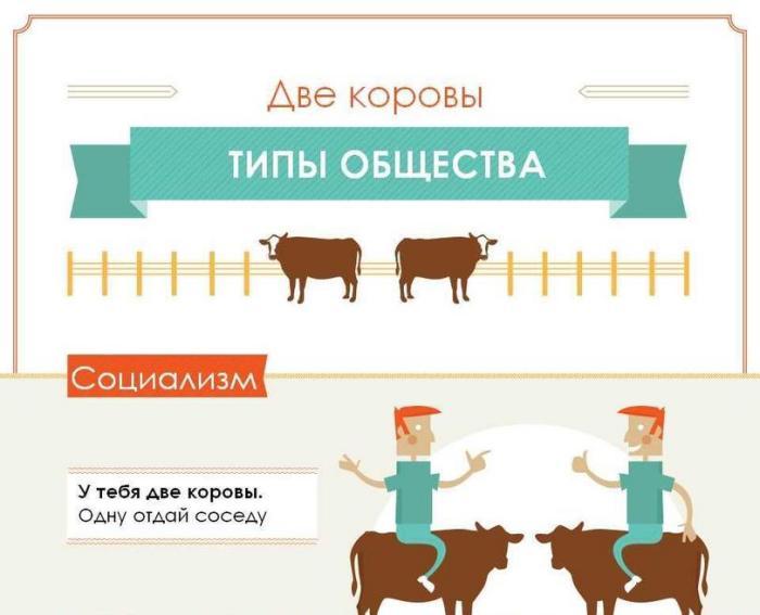 Типы обществ на примере двух коров