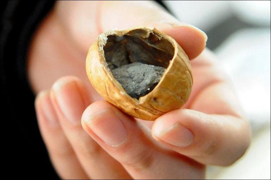 Поддельные грецкие орехи