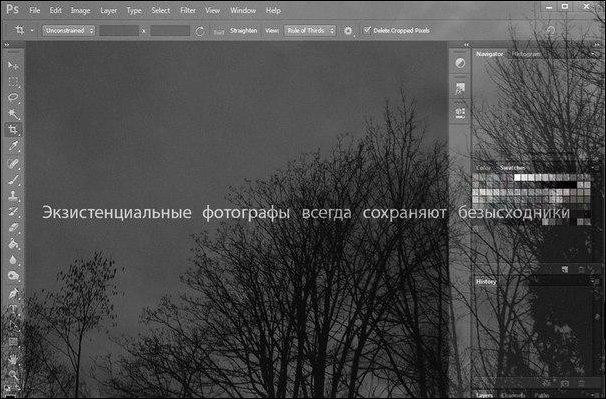 Подборка фотографий, фотоприколы