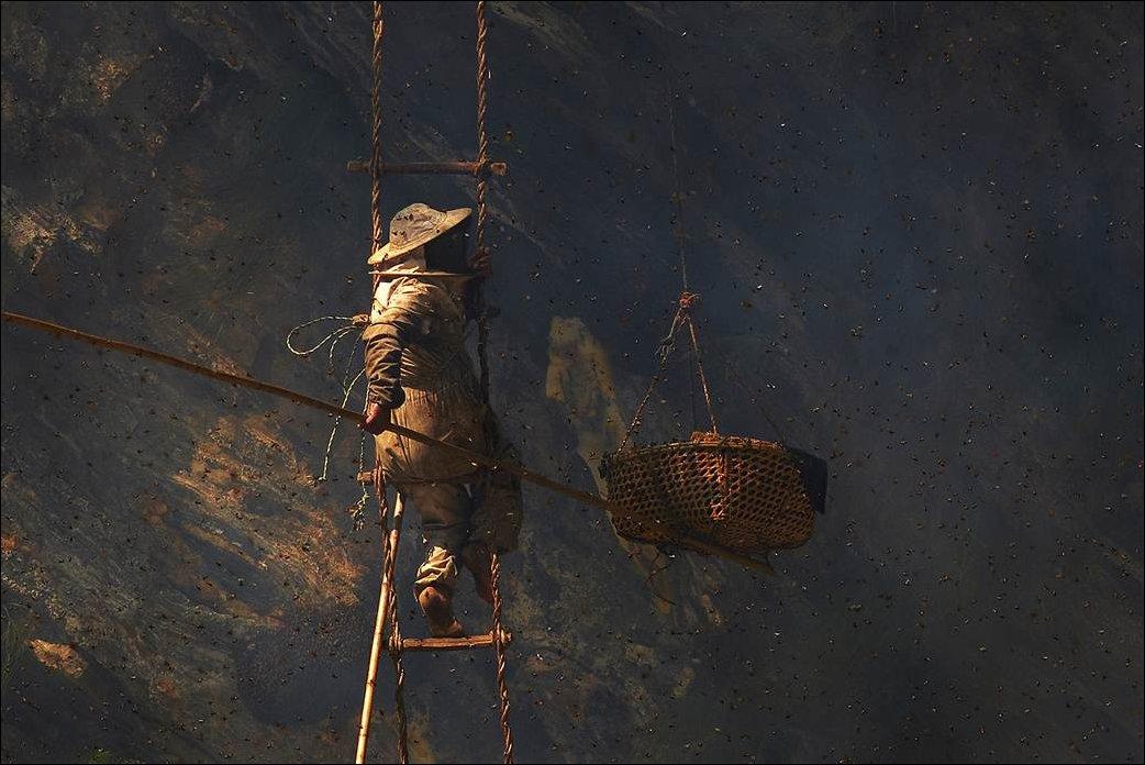 Охота за диким медом в Непале