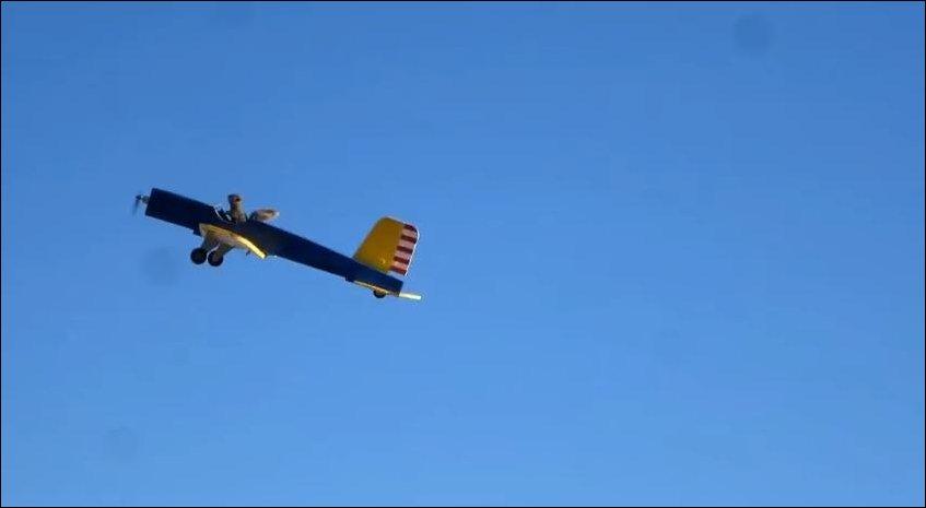 Белка угнала самолет