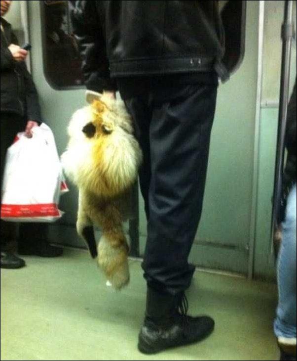 Незаурядный пассажир метро
