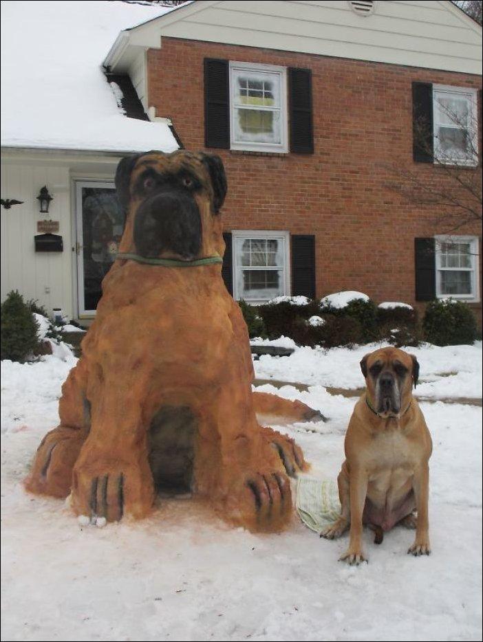 Снежные копии домашних животных
