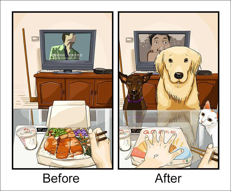 Жизнь до и после заведения собаки