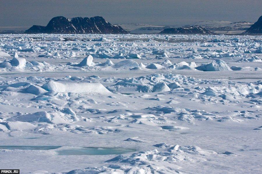 arctic-08