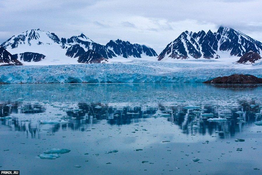 arctic-11