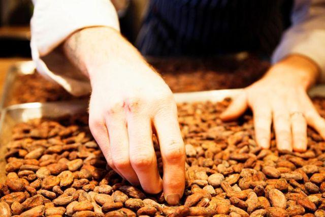 how-chocolate-made-13