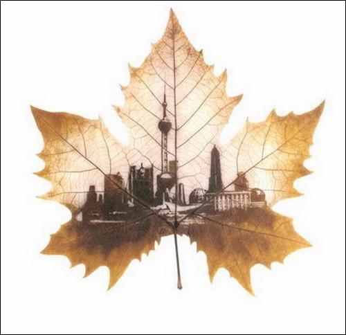 leaves-02