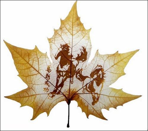 leaves-03