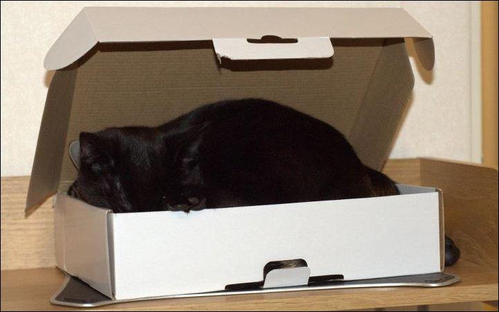 Одна коробка на двоих