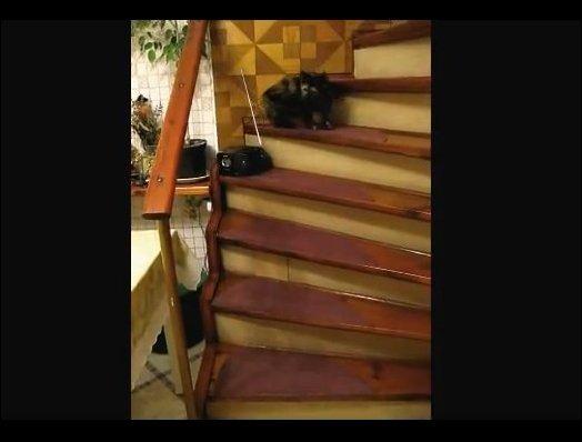 Вальс на лестнице