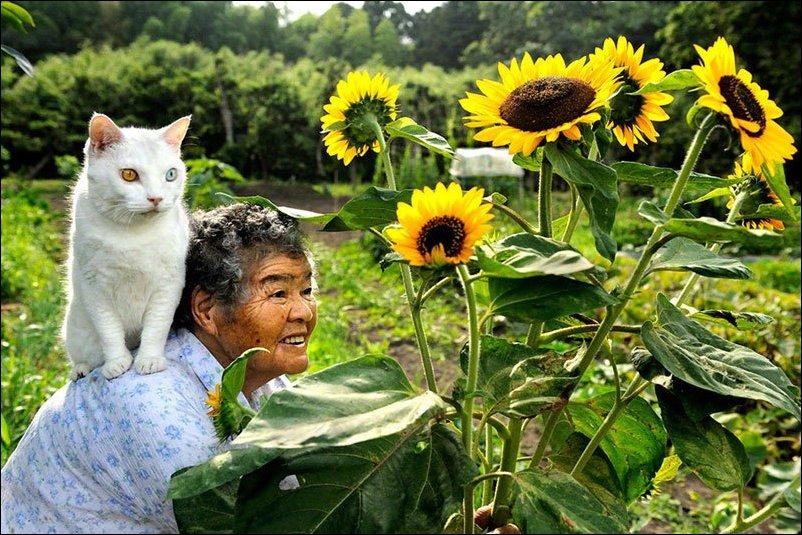 Фукумару и Миса