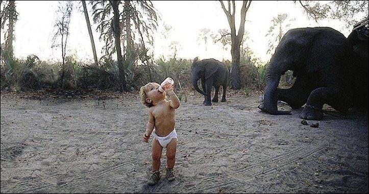 Типпи из Африки